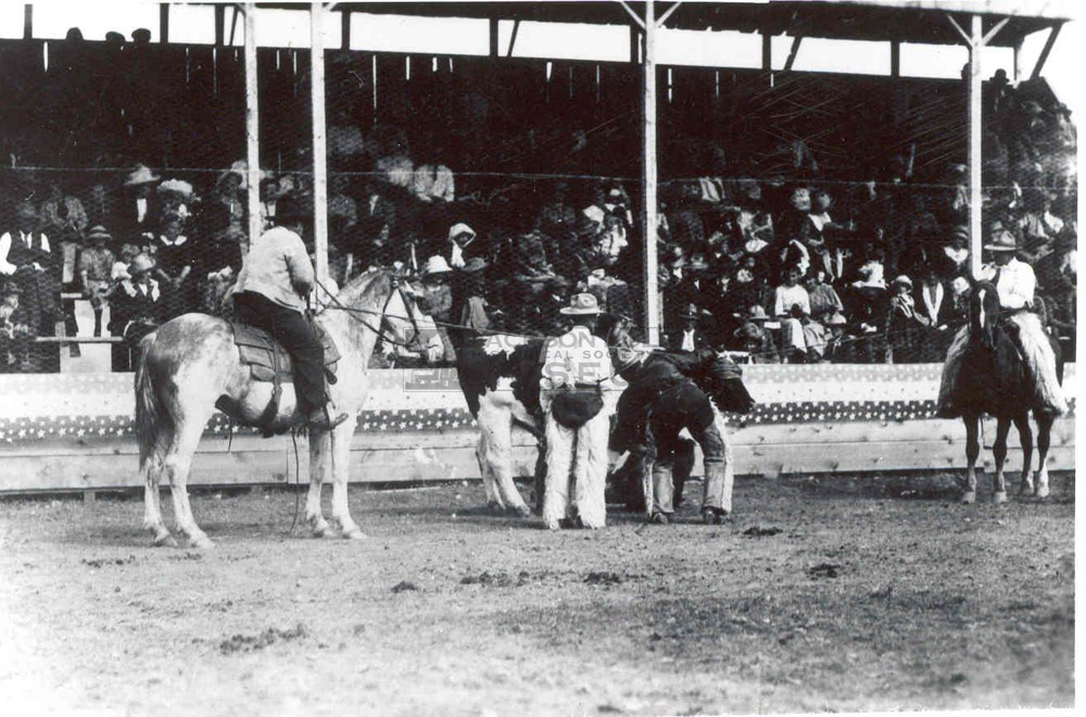 The four who organized the first rodeo: Jack Enyon, Pierce Cunningham, T. Lloyd and Roy Van Vleck.