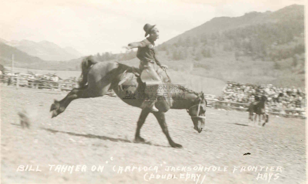 "Bill Tanner riding ""Carioca"" at the Jackson Hole Frontier Days."