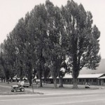 Kudar Motel in 1989, JHHSM 1958.2738.001
