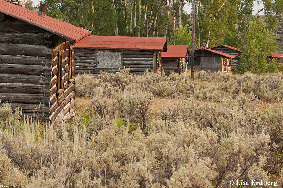 Cabin rental jackson hole cabin rental jackson hole for Cabin rentals in jackson hole wy
