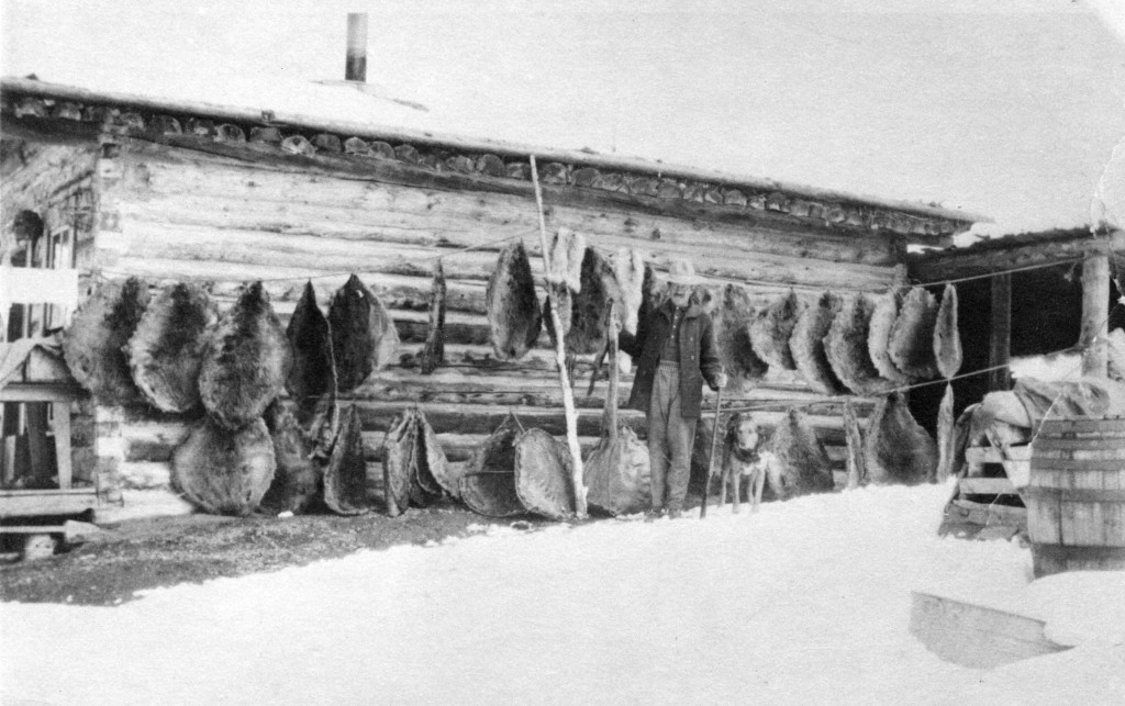 Jackson Hole resident with furs. Collection of the Jackson Hole Historical Society & Museum