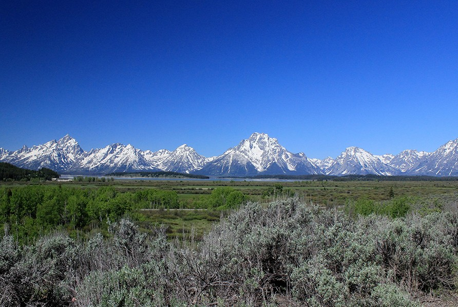 view-of-tetons