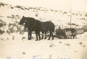 Horse-drawn sleighs were the primary mode of winter transportation.