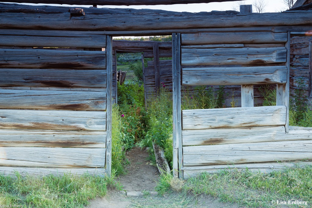 Luther Taylor Cabin: Taylor Cabin