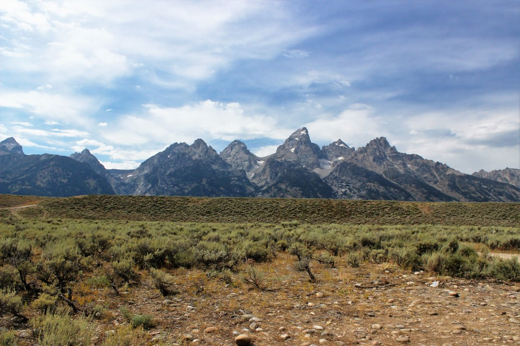 The Tetons rising from the sage plains of the valley. Photo by Samantha Ford
