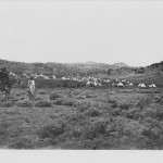 Washakie Camp 7220