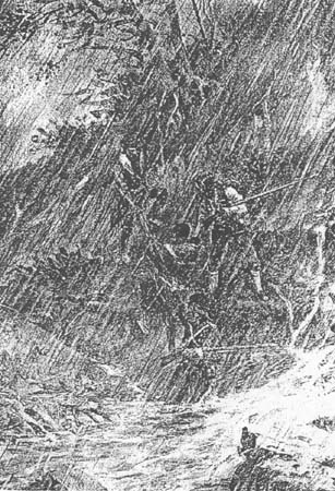 Fig 19: The Deluge at Colter Falls