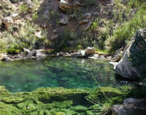 Thermopolis--one of the springs
